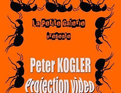 Projection vidéo de l'artiste Peter Kogler en salle de réunion jusqu'au 22 février 2018